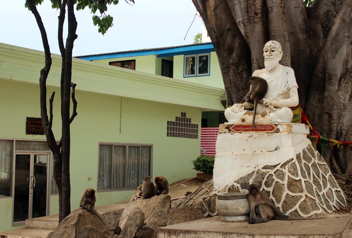 Обезьяны на статуе монаха