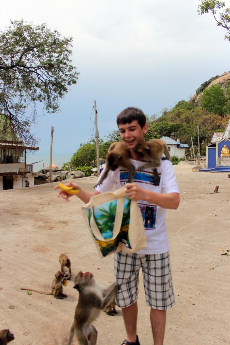 Егор кормит обезьян