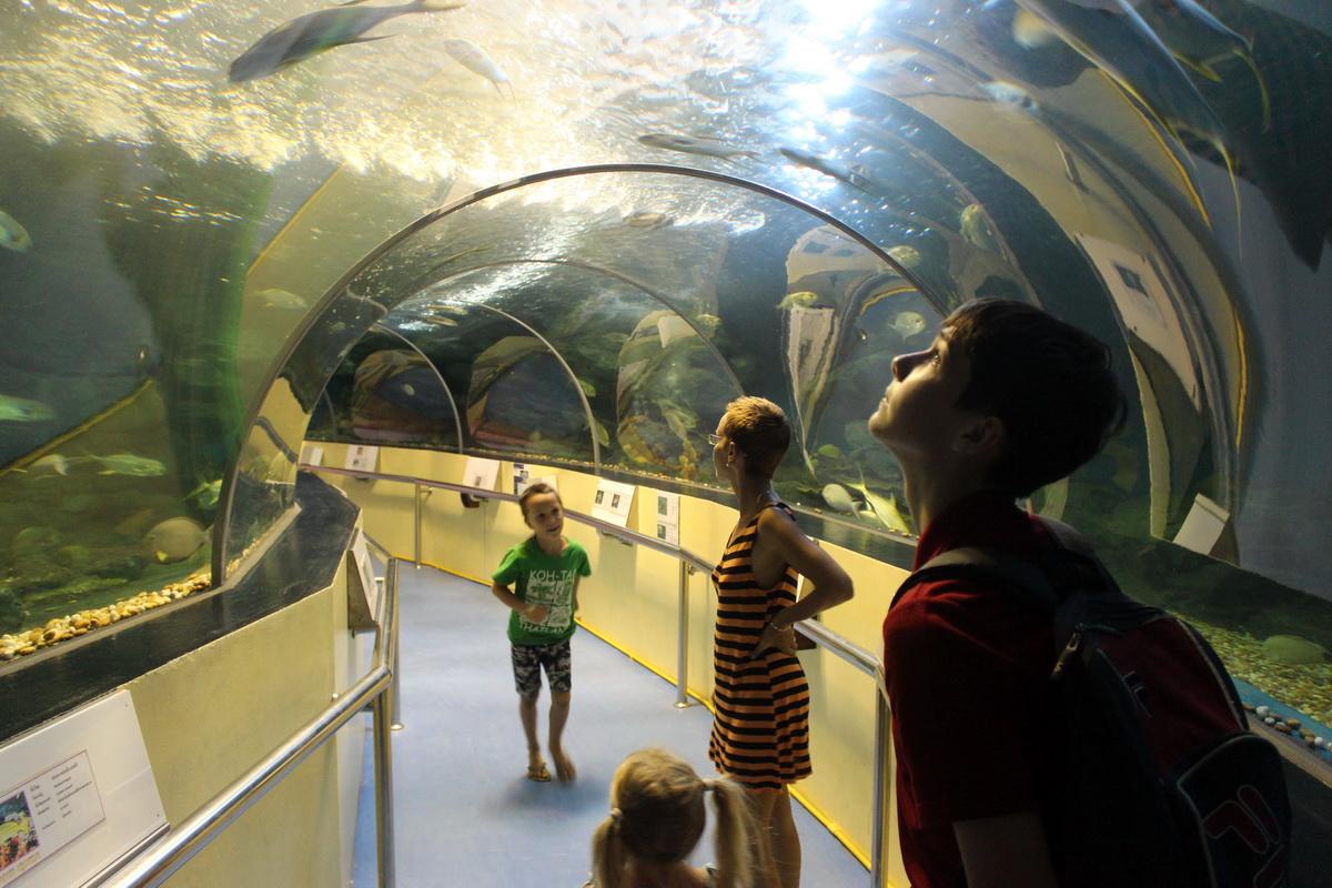 Небольшой тоннель под водой