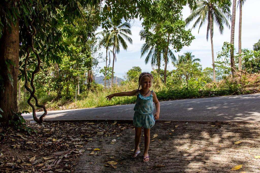 Сашка указывает дорогу к водопаду