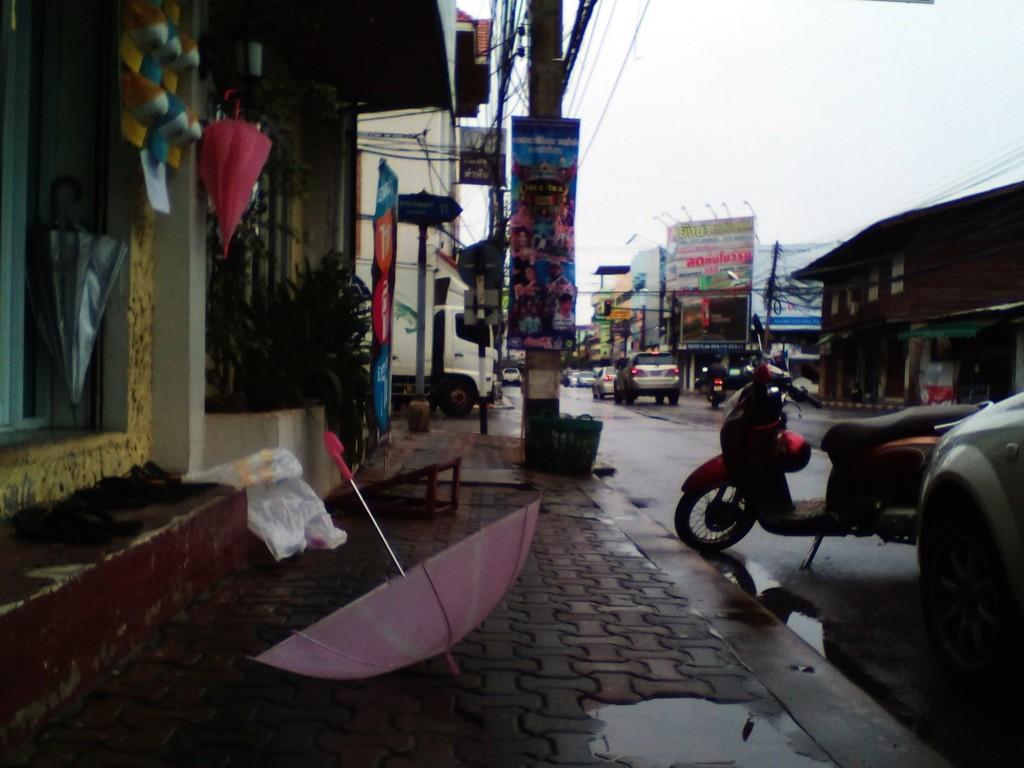 Сурат после дождя